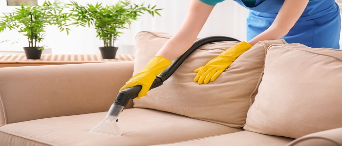 Sofa Cleaning & Mould Treatment